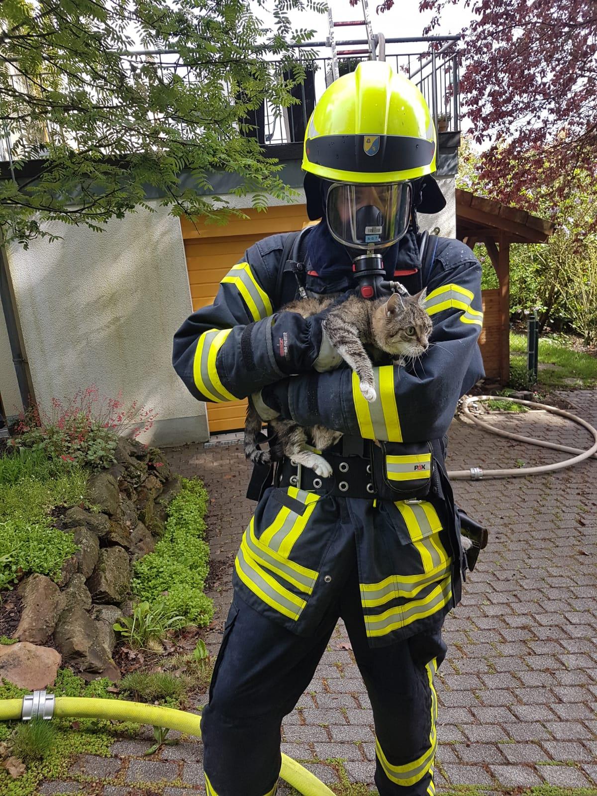 Einsatz 11/2019: Küchenbrand